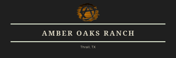 Copy-of-Copy-of-Amber-Oaks-Ranch-1.png